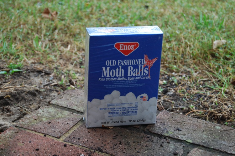 Do Mothballs Repel Deer?